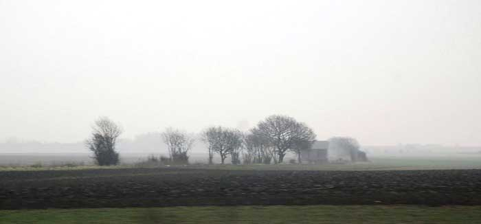 Flat Bedfordshire landscape in a light morning mist.